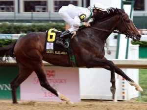 alexandra1 300x225 Rachel Alexandra & Zenyatta: The Race that Must Go On