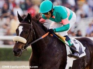 zenyatta 300x223 Rachel Alexandra & Zenyatta: The Race that Must Go On
