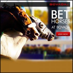 Bovada Horses 300x300 2013 Preakness Odds, Stakes Post Positions, Racing Form & Picks