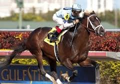 Verrazano 2013 Kentucky Derby Odds, Posts, Predictions, & Free Picks